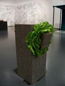 Giovanni-Anselmo-Senza-titoloscultura-che-mangia-l'insalata - Centre Pompidour - Parigi